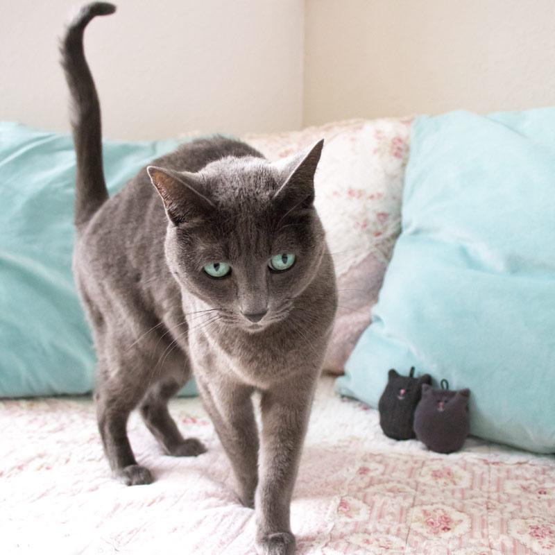 Glücksbringer Katze selber nähen 18